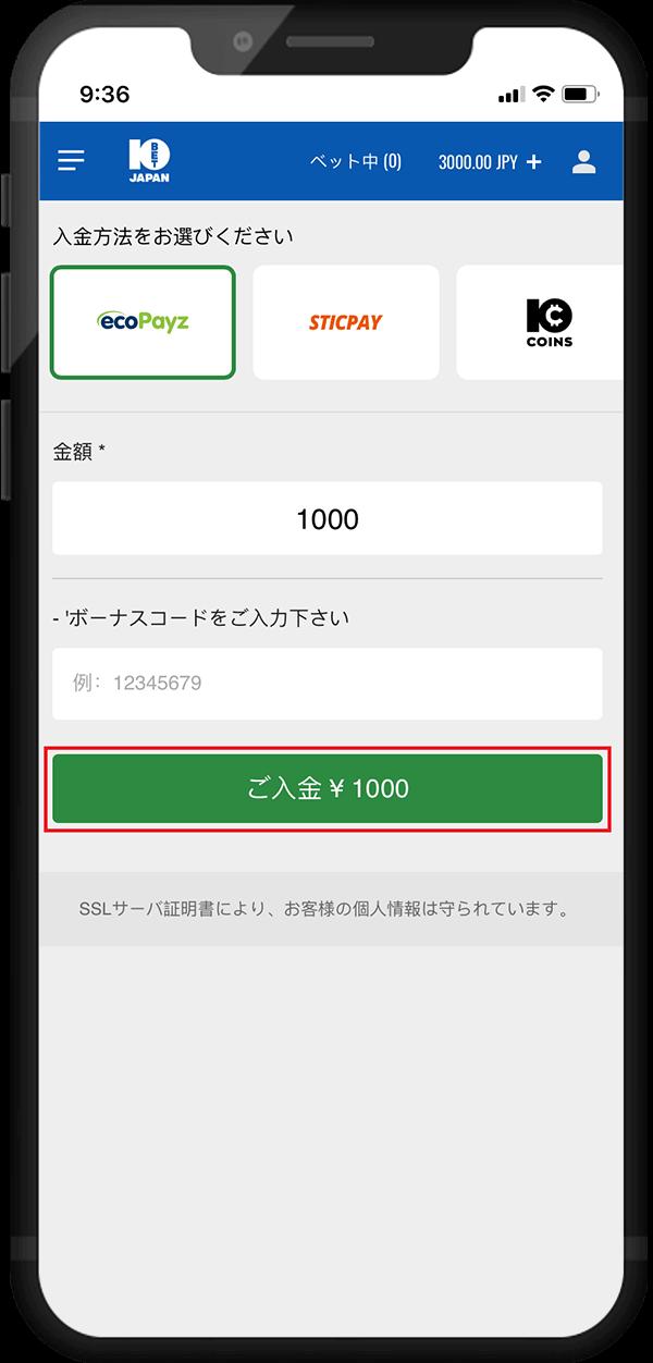 預り金ecoPayz03
