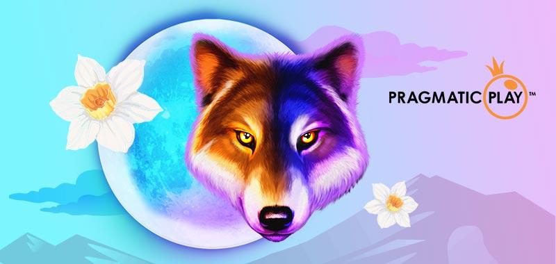 Pragmatic Play カジノゲームプロバイダー